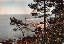 BR53893 Ile de Noirmoutier echappee sur le bois de la chaize    France
