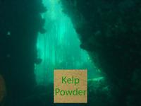 Kelp Powder (Ascophyllum nodosum) | 50g-100g