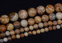 Natural Stone Picture Jasper Gemstone Round Beads 15'' 4mm 6mm 8mm 10mm