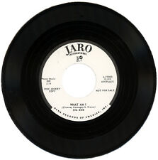 "BIG BOB  ""WHAT AM I""   LATE '50's R&B CLASSIC      LISTEN!"