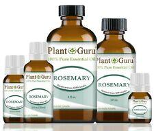 Rosemary Essential Oil 100% Pure Therapeutic Grade Rosmarinus Officinalis