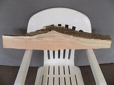 "33"" x 4"" Honey Locust Live Edge Lumber Wood Shelf Slab Board Solid"