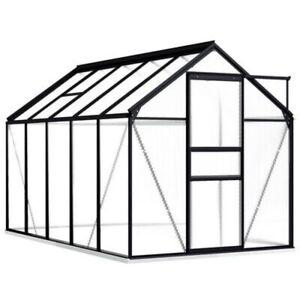 Gewächshaus Aluminium mit Fundament Treibhaus Glashaus Tomatenhaus 5,89 m² Neu