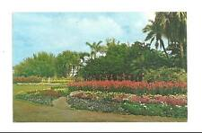 ORLANDO FL Lake Eola Flower Beds & Palms Vtg Postcard