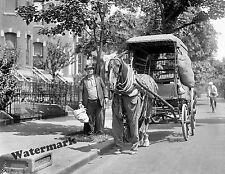 Photograph Vintage Delivery Horse & Wagon Washington D.C. 1923  8x10