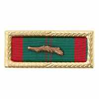 RIBBON UNIT: VIETNAM CIVIL ACTION FIRST CLASS WITH PALM AND LARGE FRAME w/ PALM