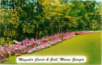 Postcard Magnolia Courts And Grill Macon Georgia