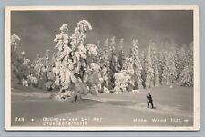 Alpine Snow Hiker—Hohe Wand RPPC Vintage Austria Photo Fotokarte AK Stollhof 30s