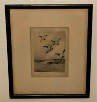 Original ROLAND CLARK Pencil Signed Sporting Art Etching - Canvasbacks in Flight