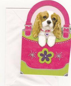 Cavalier King Charles Spaniel Dog Blank Inside Greeting Card