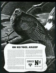 1941 wild turkey asleep on snowy branch art Conoco Motor Oil vintage print ad