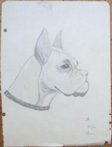 Boxer Dog 1944 Original Art, Hand-Drawn Pencil Sketch - Artist-Signed