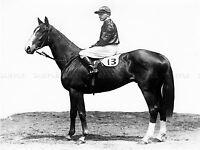 SPORT HORSE RACING CAULFIELD CUP ROGILLA JOCKEY LARGE POSTER ART PRINT BB3265A