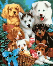 """16X20"""" DIY Paint By Number Kit Oil Painting On Canvas Cute Dogs Animal SPA1547"""
