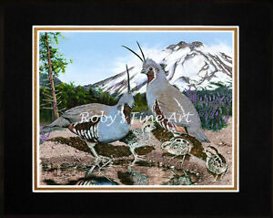 """Matted Mountain Quail Art Print """"Covey Cove"""" Mt Lassen 8""""x10""""  Mat by Roby Baer"""
