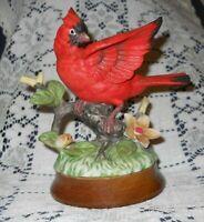 Vintage Bone China Red Cardinal on Branch