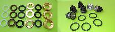 Interpump repairs parts kit 1 + KIT 29 all models Series 47 48 ø22