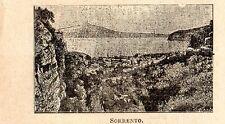 Stampa antica SORRENTO piccola veduta golfo di Napoli Campania 1899 Old print