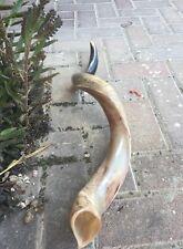 Half polished Natural Judaica Kosher 60-70 Cm Yemenite Kudu Shofar horn Israel