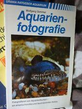Aquarium Fische - Aquariumfotografie Fotografieren von Aquarienfischen Guppi