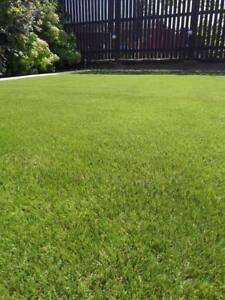 FAKE ARTIFICIAL GRASS LAWN OFF CUTS Gold 38mm 06/21 3.05 x 4 m = 12.2 m2