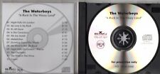 CD The WaterboysA Rock In The Weary Land - Promo acetate albumCD