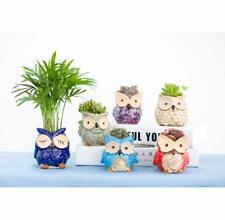 """Pack of 6-2.75"""" to 3.35""""- Ceramic Owl Succulent Pots Cute Animal Plant Planters"""