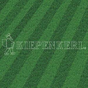 Kiepenkerl RSM 3.2 Profi Sportrasen Regeneration mit Poa 10kg ***Toppreis***