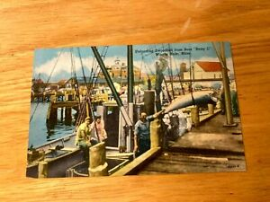 "WOODS HOLE CAPE COD MASS.UNLOADING SWORDFISH FROM BOAT "" BETSEY C "" PC"