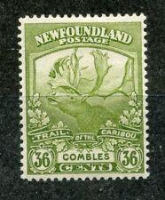 NEWFOUNDLAND 1919 36c Caribou mint hinged. SG 141. Cat £24