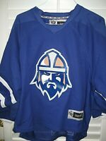 Vintage GREENVILLE ROAD WARRIORS ECHL Goalie Jersey- #29 SPIDELL Adult Small
