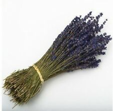 LAVENDER BUNCH 250 STEMS DRIED FLOWERS 30CM WEDDING FAVOURS OR DECORATIONS by