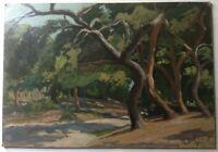 Tableau ancien Post-impressionniste Parc Eucalyptus Nice Huile Robert BELGRAND