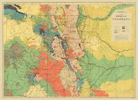 Topo Map - Colorado Geological - USGS 1881 - 23.00 x 31.52