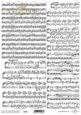 Printed Translucent Vellum Scrapbook  Paper A4 Music Notes