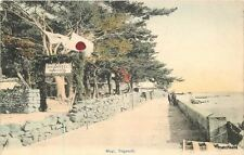 C-1910 Hand colored Mogi Nogaski postcard 6877 Japan