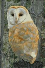 "Barn Owl 6 Counted Cross Stitch Kit 15"" x 10.00"" FREE P&P B2450"