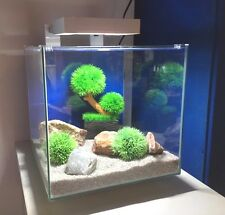 Ciano Nexus Pure 15 White Cube Aquarium + L.E.D Light - Includes Filter