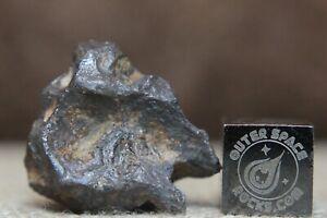 Sericho Pallasite Meteorite from Kenya Africa Habaswein 9g zoomorphic shape