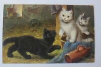 Katzen, Korb, Decke, Flasche,    1910  ♥