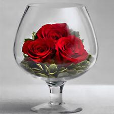 Glass Clear Vase Bottle Plant Flower Decor Terrarium Wedding Centerpieces