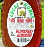 RAW BLUEBERRY BLOSSOM HONEY 2LB 100% PURE LOCAL LIGHTLY FILTERED NJ/NY/PA/DE/MD