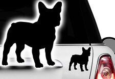 1xAuto 11x10cm Aufkleber Französische Bulldogge French Bulldog Bulli Bully Hund