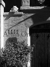 Artist Photograph Black white photo gothic gargoyle 8x10 Hollywood architecture