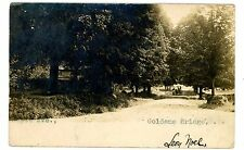 Goldensbridge NY - VIEW DOWN MAPLE AVENUE - RPPC Postcard Goldens Bridge