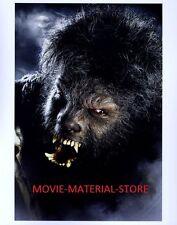 "Benecio Del Toro Wolfman 8x10"" Photo #L2556"