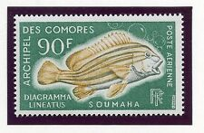 STAMP / TIMBRE DES COMORES PA N° 24 ** POISSONS