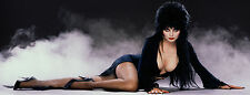 "HALLOWEEN SEXY ELVIRA MISTRESS OF DARK GOTHIC VAMP VINTAGE ART LIFESIZE 24""X 63"""