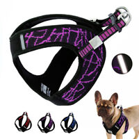 Reflective Mesh Small Dog Harness Simple Step-in Puppy Jacket Vest Choke Free