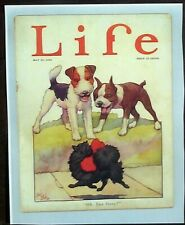 Boston Terrier Fox Pomeranian Dogs Reprint 1924 Cover Life Mag By Robt Dickey